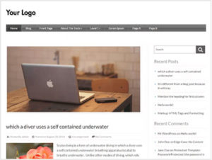 best-Wordpress-themes-for-Amazon-affiliate-marketing